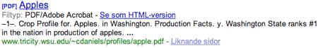 Hur Google visar resultatet på sin hemsidan när en länk till en PDF-fil visas